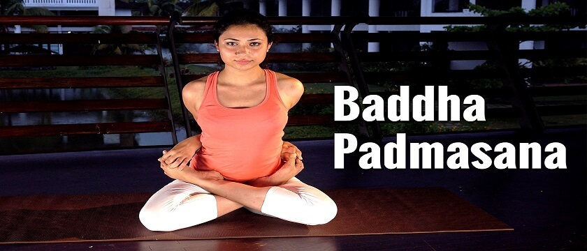 baddha-padmasana-benefits-adjustment-and-cautions